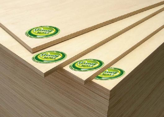 """""""中国十大板材品牌""""泰尔美:创造全球一流的板材产业"""