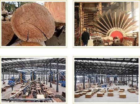 中国十大板材品牌:泰尔美缔造建筑生活美学