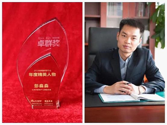 旺德府荣获多项大奖 匠心品质树立行业典范!